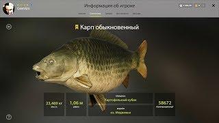 Русская рыбалка 4 Карп и Амур Фарм на Озере Медвежье