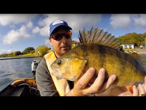 Giant Perch Fishing - Tips | Tackle | Tactics