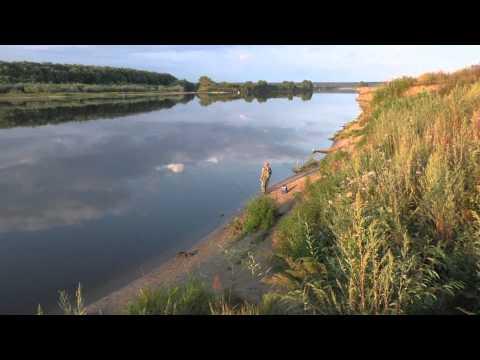 Рыбалка на Оке в августе 2015 года в Рязанской области