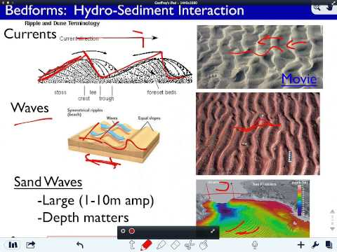 Bottom Processes - Sediment Transport