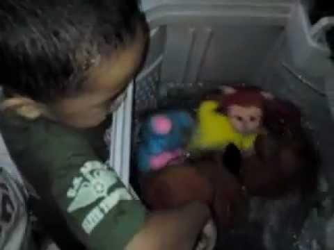 Full Download Memandikan Anak Monyet