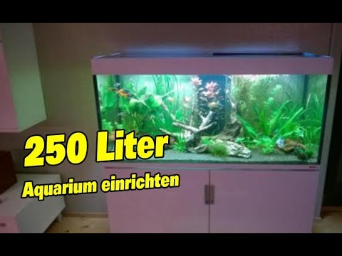 aquarium einrichten ber 200 liter f r anf nger youtube. Black Bedroom Furniture Sets. Home Design Ideas