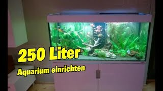 search aquarium einrichtungsbeispiele vidyosite. Black Bedroom Furniture Sets. Home Design Ideas