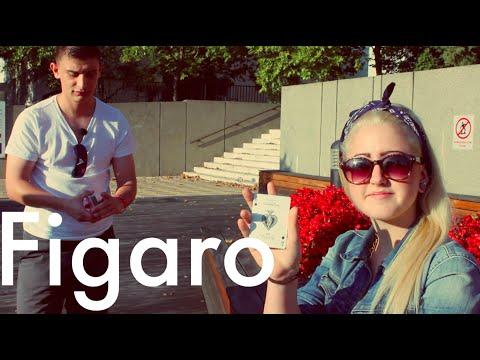 Dara // Figaro Videóverseny