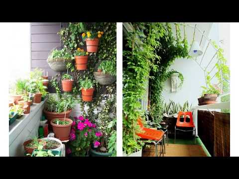 Fabulous Plant Decoration in Balcony To Light Your House