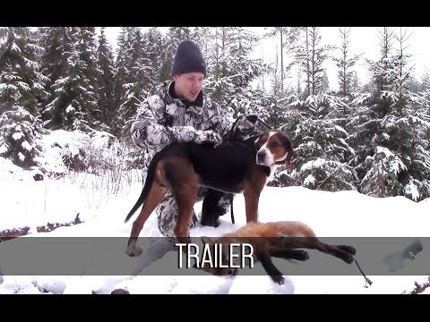 NH: TRAILER | Fox Hunting With Hounds 2018