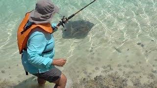 Stingray chases fisherman