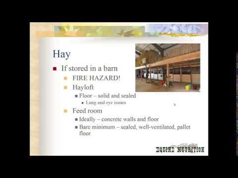 Feed storage and feeding tips