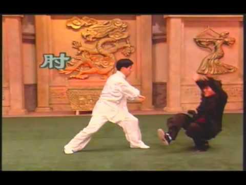 陳正雷老師 Tai ji Master Chen Zheng lei 勁力