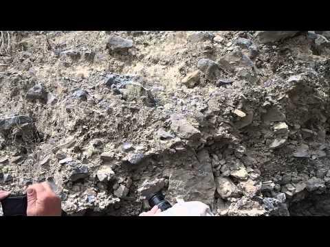 Habitat Aztekium ritteri