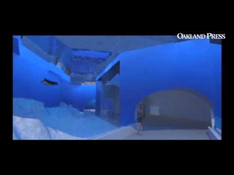 Detroit Zoo Penguin Conservation Center interior.