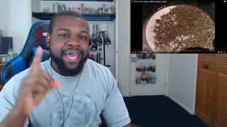 Pink Floyd - Money (Official Music Video) Reaction