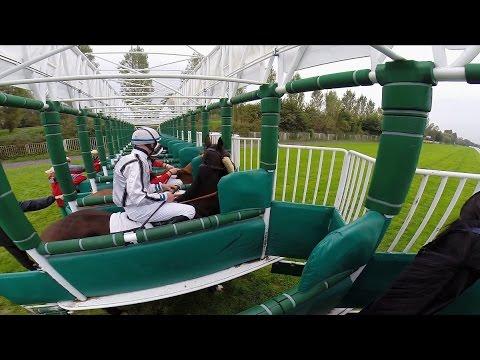 Horse race by jockeys view extended / Dostih z pohledu okejky