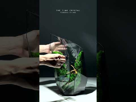 The Time Crystal, a Botanical Collection by TerraLiving, Preserved Moss Geometric Terrarium