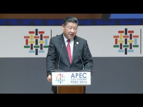 Chinese President Xi Calls for Integrated Regional Development in Asia Pacific Region