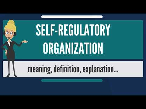 What is SELF-REGULATORY ORGANIZATION? What does SELF-REGULATORY ORGANIZATION mean?