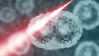 Could This Be The Cure To Cancer?