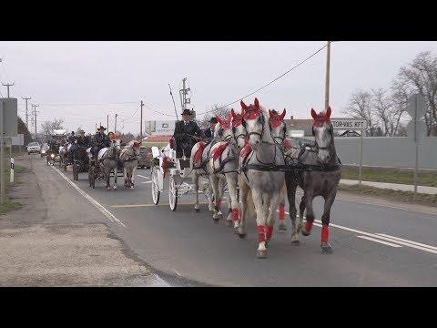 Vivien és Norbert esküvője 2018.  - Lovasok, lovas kocsik felvonulása (Előzetes)