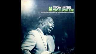The Muddy Waters Blues Band - Sting It