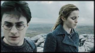 Poison & Wine (Harry/Hermione)
