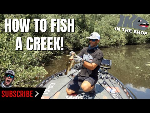 How To Fish A Creek!