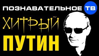 Хитрый Путин (Познавательное ТВ, Леонид Доброхотов)