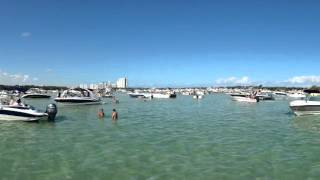 Boats Miami Beach Haulover Park