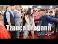Download Tzanca Uraganu , Indiana Show - LIVE - Nunta Severin - Tania & Aurel