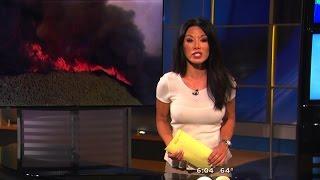 Sharon Tay 2015/08/03 CBS2 Los Angeles HD