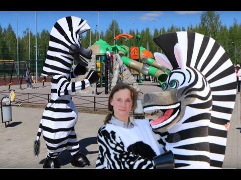 Zebra Mascot Costume Dancing