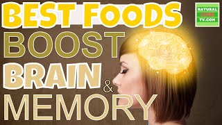 BOOST YOUR BRAIN and MEMORY Using These Eleven Best Foods