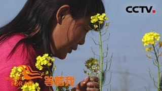 [等着我 第五季] 发布寻人启事 吴兵终于和家人团聚 | CCTV