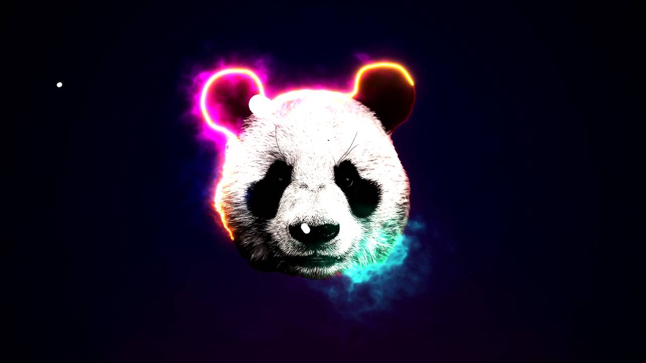 Related Keywords Amp Suggestions For Neon Panda