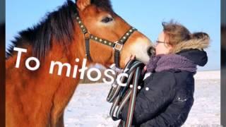 Kuba i Przyjaciele - Jeździectwo-moja pasja i życie