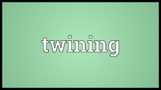 Twining Meaning