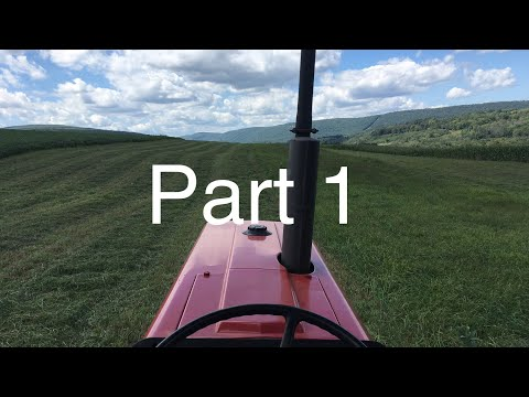 Advice For Beginning Farmers. My Story Part 1