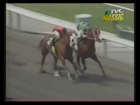 MATCH RACE - Quarter Horse -vs- Thoroughbred