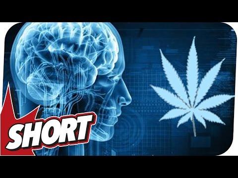 Hirnschäden nach Cannabis-Entzug? - So gefährlich ist Kiffen wirklich!