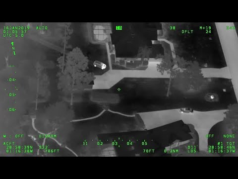 The Penthouse Blog - WTF: Horses in Pasture Chase Suspect Fleeing Florida Deputies