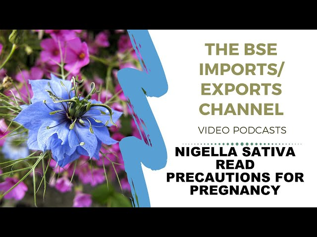 Nigella Sativa/Black Cumin Precautions for Pregnancy