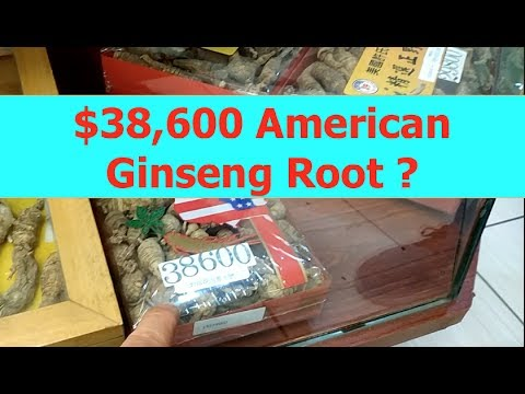 Giant asian supermarket in North America