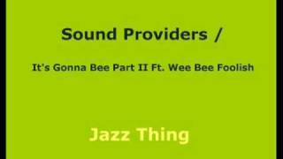 Sound Providers / It