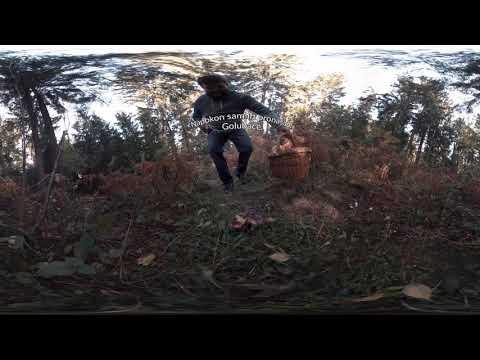 Argeta Exclusive - Virtualno iskustvo s Lukom Koširom