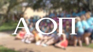 Alpha Omicron Pi University of South Florida Bid Day 2017