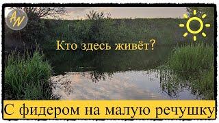 Хочешь бойкую РЫБУ Рыбалка на реке Свияга