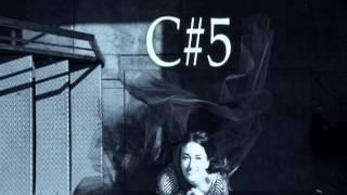 Sara Bareilles Vocal Range: The Blessed Unrest (C#3-G5)