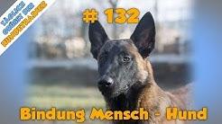 TGH 132 Bindung zwischen Mensch und Hund - Beziehung Mensch Hund - Hundeschule Stadtfelle
