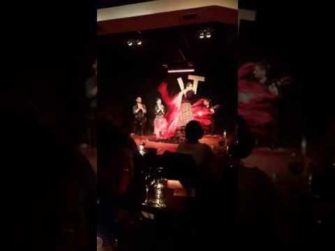 Flamenco Shows -Madrid(2)