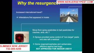 Why and where do bed bugs come from in New Jersey 732-640-5488 | Bed Bug Control Middletown NJ