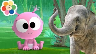 Funny GooGoo & GaaGaa Baby + My Color Friends   30 Minutes Compilation   Animals & Music for Babies